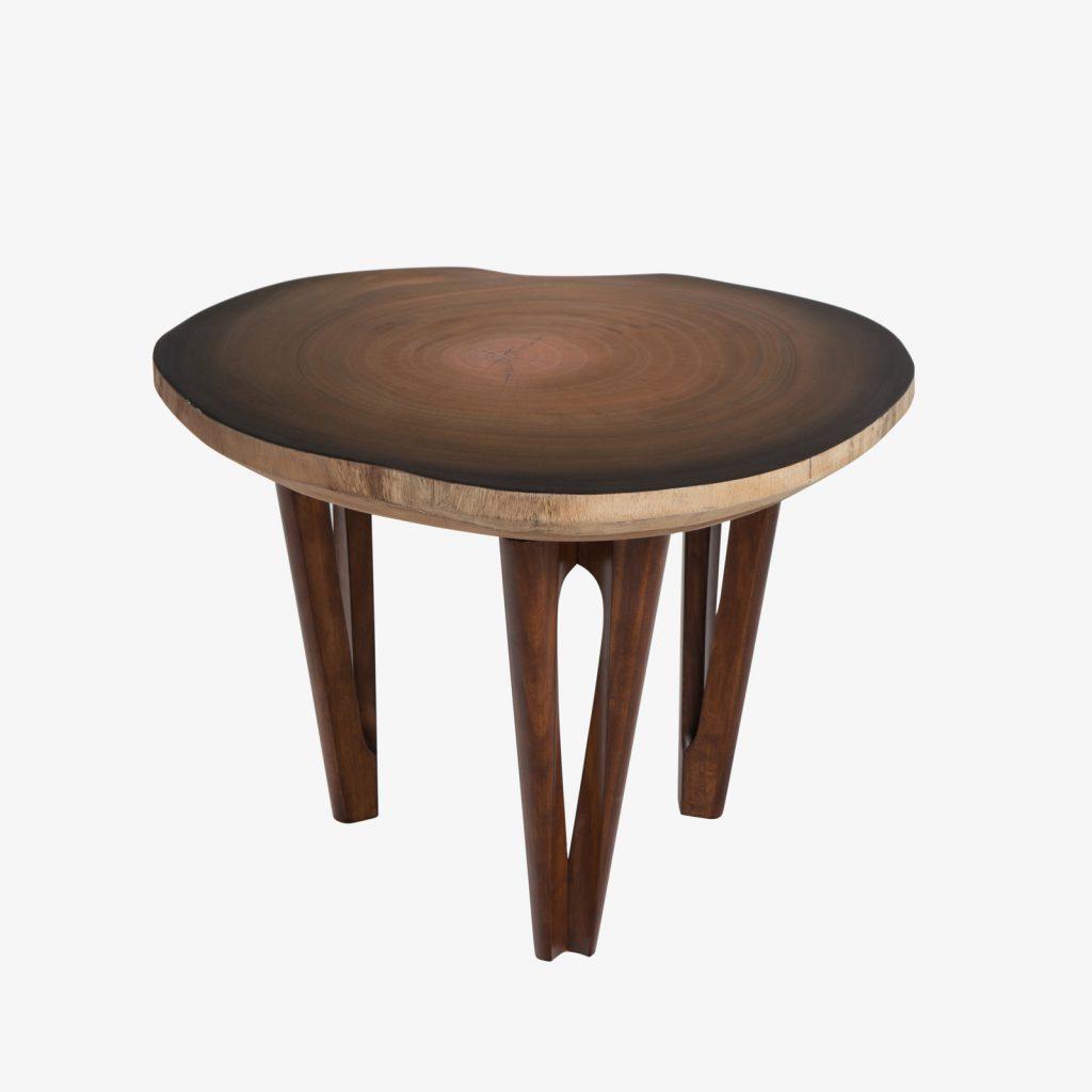reGen_2Mundos_Tables_18